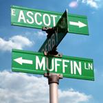 Muffin Lane